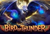 Играть Bird of Thunder бесплатно | Вулкан Делюкс без регистрации