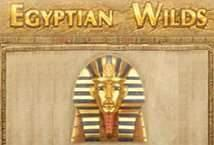 Играть Egyptian Wilds бесплатно | Вулкан Делюкс без регистрации